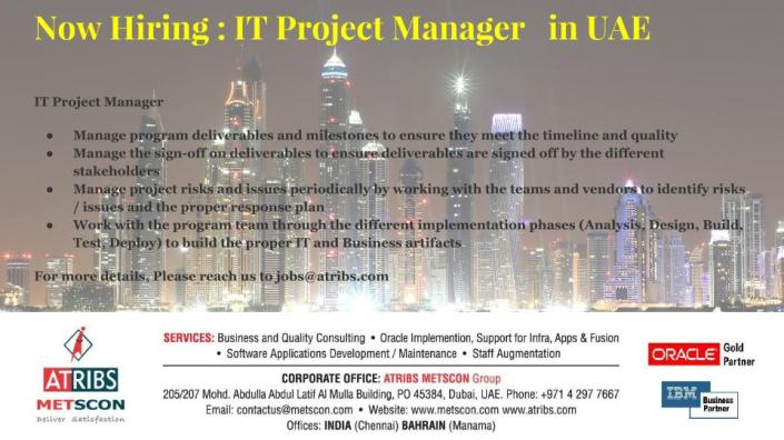 IT Project Manager