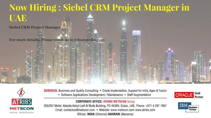 Siebel CRM Project Manager