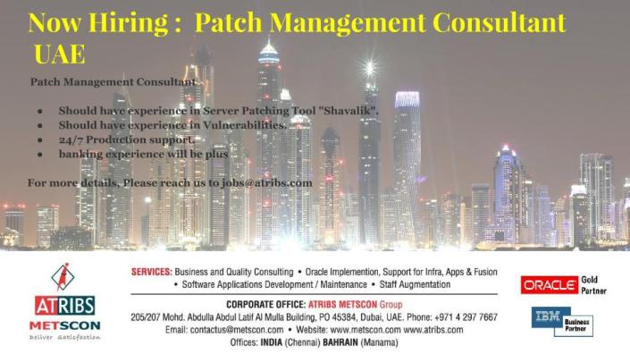 Patch Management Consultant