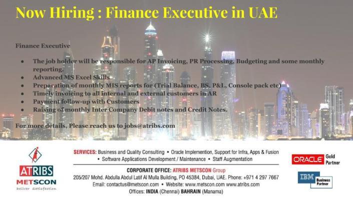 Finance Executive