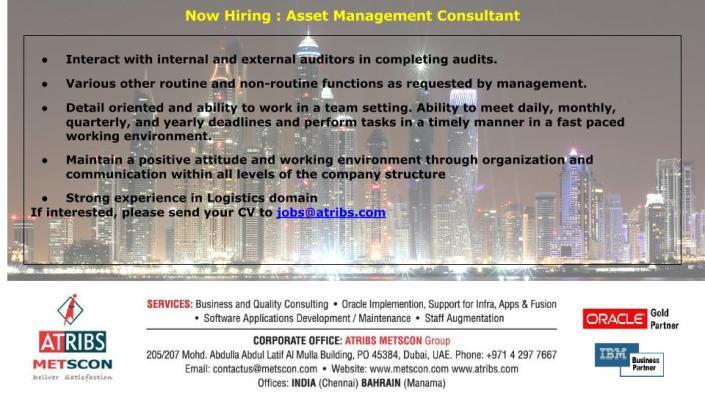 Asset Management Consultant