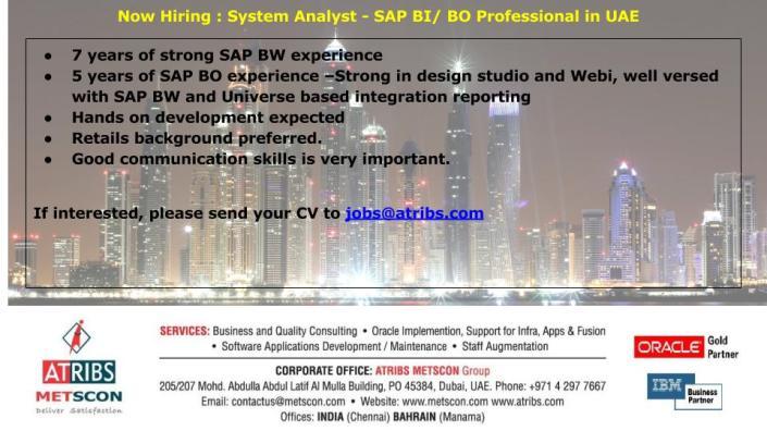 system-analyst-sap-bi-bo-professional